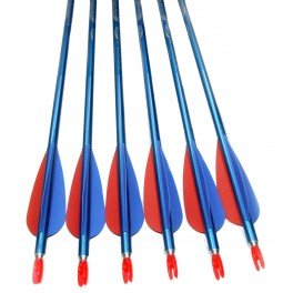 Easton Pack 12 Flechas 1820-30 Genesis